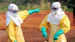 Le FMI en partie responsable de la propagation d'Ebola, selon des chercheurs