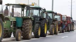 Γιαννιτσά: Βρέθηκε η σπείρα που έκλεβε αγροτικά