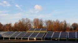 Junge Unternehmer kämpfen für die Energiewende in