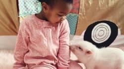 2살 아기와 생후 3개월 돼지의