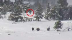 Ο Μεγαλοπόδαρος on camera στο Εθνικό Πάρκο