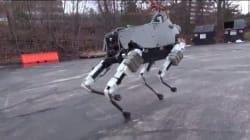 Voici Spot, le robot qui ne tombe