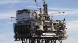 Prix du baril: Le Brent recule, rattrapé par la hausse historique des réserves