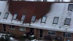 Πως το χιόνι «πέρασε χειροπέδες» σε έναν...κατ' οίκον καλλιεργητή