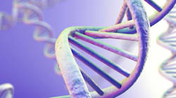 How DNA Results Shaped My