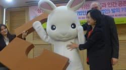 화장품 동물실험 금지하는 법 개정안, 국내 최초
