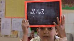Un(e) Amazigh(e) arabisé(e) par