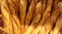 La Tunisie sans pain