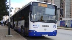 650 nouveaux bus pour l'Etusa : une nouvelle ère pour le transport urbain à Alger
