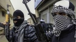 Les jumeaux jihadistes