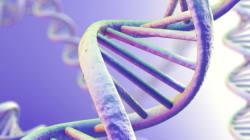 Genes for Good: Μια νέα εφαρμογή του Facebook θέλει να τεστάρει το DNA