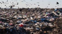 Ce que coûte la pollution au