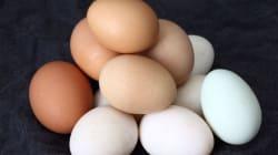 Τέστ: Πώς θα ελέγξετε εάν τα αβγά σας είναι