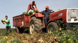 Αποζημιώσεις ύψους 30 εκατ. σε αγρότες από τον