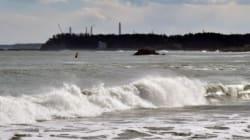 Traces de radioactivité dans le Pacifique canadien liées à