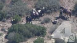 Etats-Unis : dix shérifs suspendus pour avoir passé à tabac un homme à terre