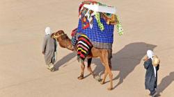 Tunisie: Le secteur du tourisme en berne au 1er trimestre