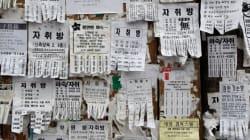 서울 청년 5명 중 1명은