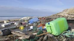 Ein Mann wollte die illegalen Müllberge nicht länger akzeptieren - und fand eine geniale