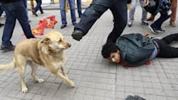 Ο Λουκάνικος της Τουρκίας που έγινε viral: Τον κλωτσάει αστυνομικός σε διαδήλωση και εκείνος κυνηγάει το