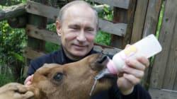 15 χρόνια Βλαντιμίρ Πούτιν: Από την KGB στην προεδρία της