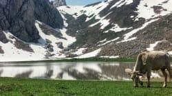 Algérie: Les dix plus belles photos de paysages sur