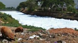 Εικόνες αποκάλυψης: Λίμνη στην Ινδία έπιασε
