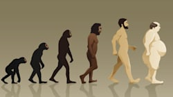 Natural Selection: Does Evolution Pull or