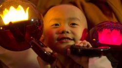 [트윗모음] 부처님 오셨다 가신 다음날의