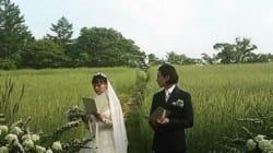 원빈♥이나영, 결혼식 비용 견적