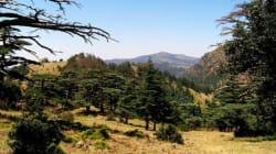 Batna: le parc national Belezma classé par l'Unesco