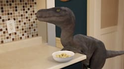 공룡 랩터를 반려동물로