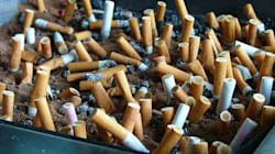Γόπες τσιγάρων που φυτρώνουν και μετατρέπονται σε δέντρα και