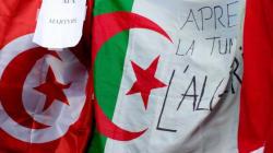 Algérie-Tunisie: Peut-on parler d'une véritable fraternité