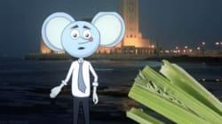 Panique à la mosquée Hassan II: Une souris donne sa version