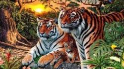 Πάτε στοίχημα ότι δε μπορείτε να βρείτε πόσες τίγρεις υπάρχουν στη