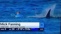 Σέρφερ δέχτηκε επίθεση από καρχαρία την ώρα που