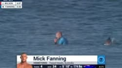 Un surfeur attaqué par un requin en pleine