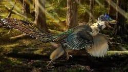 이 공룡은 '쥬라기 월드'가 틀렸다는