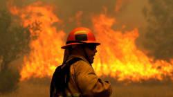 Πυρκαγιές μαίνονται ανεξέλεγκτες στην