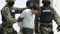 Les polices du monde entier aux trousses du baron de la drogue