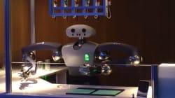 Voici Hollie, le robot