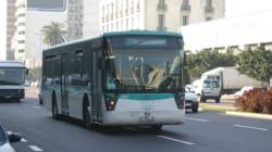 Casablanca: Le Wi-Fi dans les bus, c'est