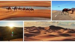 Voyage: Dix clichés du Sahara à couper le