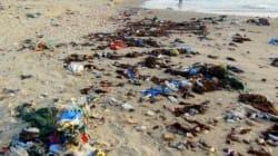 La chronique du blédard: Nos plages et les