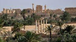 Palmyre: le groupe EI a décapité l'ancien directeur des
