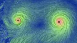 쌍태풍이 오고