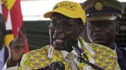 짐바브웨 무가베 대통령이 아이스크림 회사를