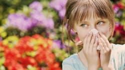 알레르기성 비염은 9월에 가장