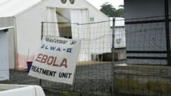 Ebola: l'OMS déclare la fin de la transmission du virus Ebola au